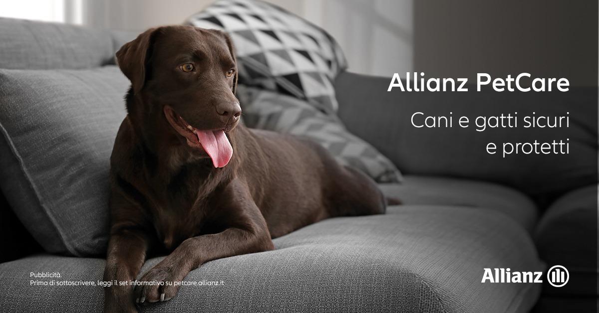 Mpp Assicurazioni - Allianz PetCare